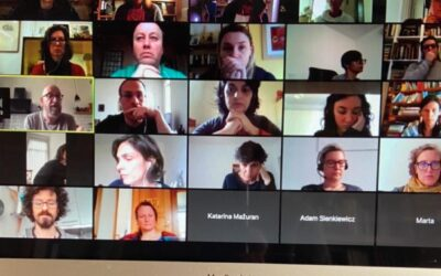 Online partner meeting to face COVID-19: Adeste+ is more alive than ever